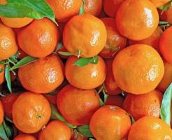 Mandarine_aroma3
